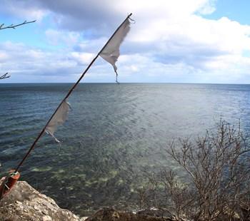 Fiskeriregulering.jpg
