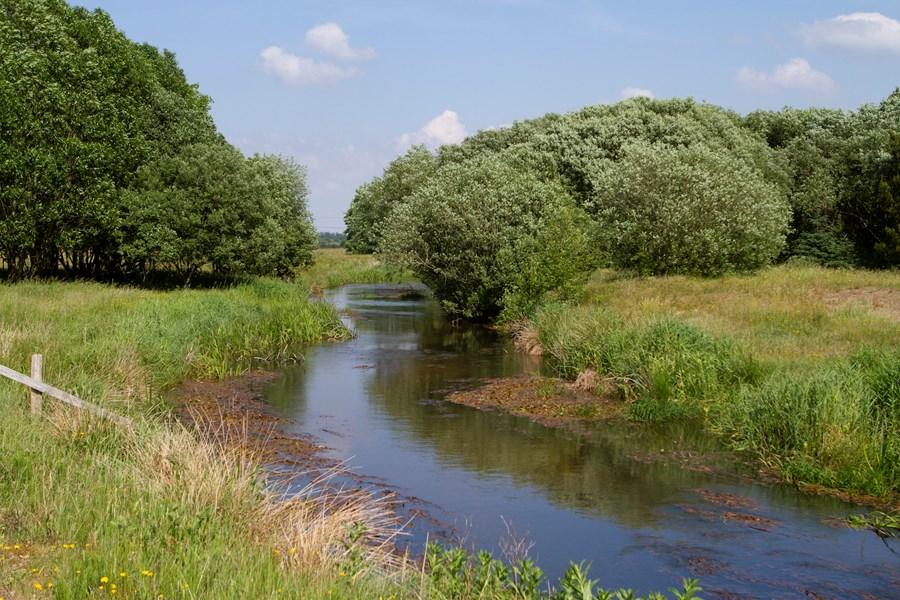 Vandråd Vandområdeplaner Udsat1