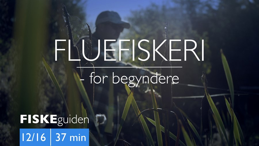 Thumbnail Fluefiskeri 12_16.jpg