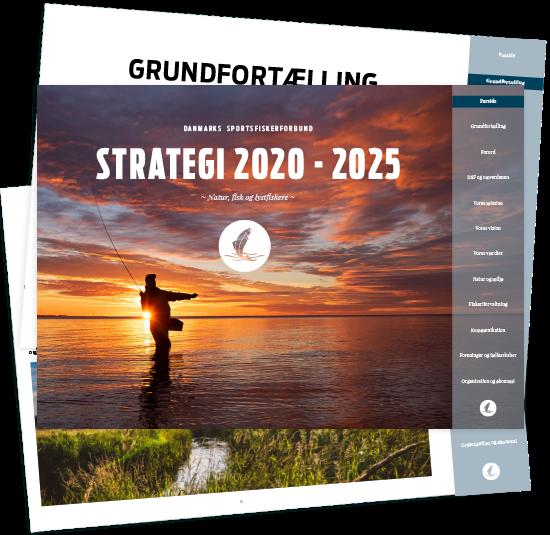 Strategi Web2
