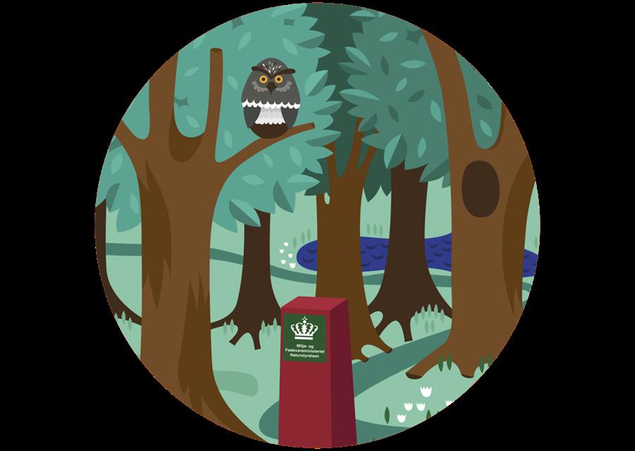 Infografik Offentlig Skov3