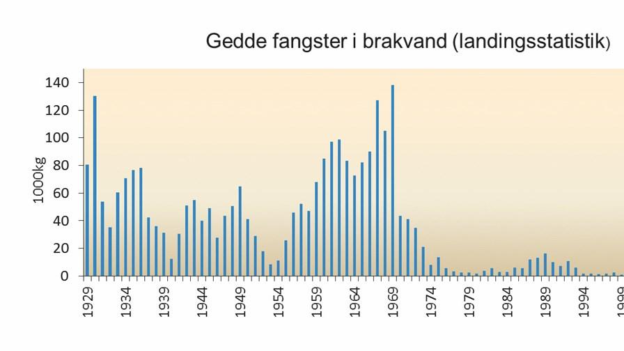 Landingsstatitsik gedder Østersøen 1929 - 2016. Fra Jacobsen & Berg, Brakvandsgedder i Danmark - Viden og Forvaltning, DTU Aqua 2018, Grafik Lene Jacobsen.jpg
