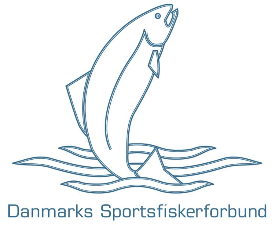 DSF_logo_3.jpg