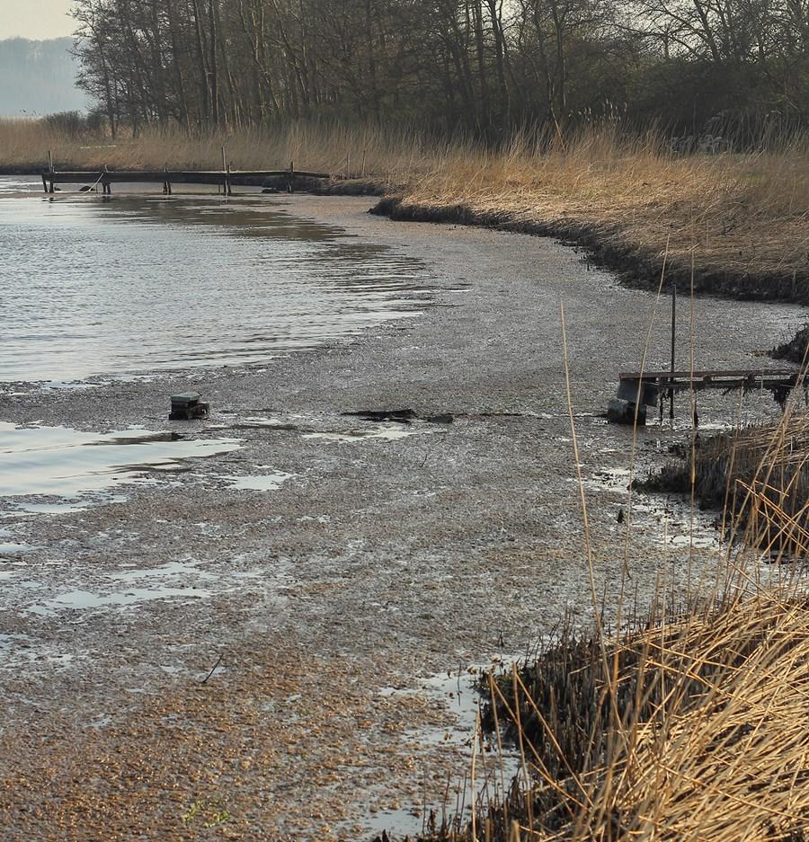 haderslev fjord 113 bæk m alger_WEB.jpg