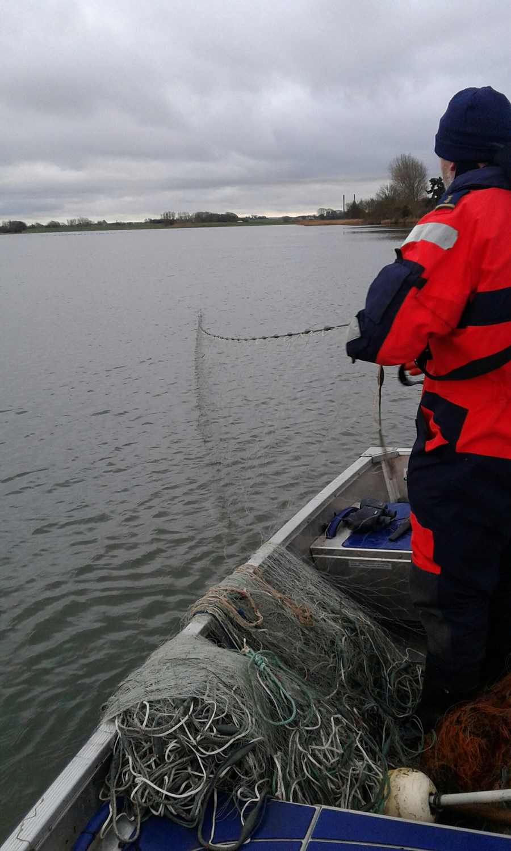 Billed 1, Fiskerikontrollen fandt 18 ulovlige nedgarn i Skælskør Fjord i sidste uge.jpg