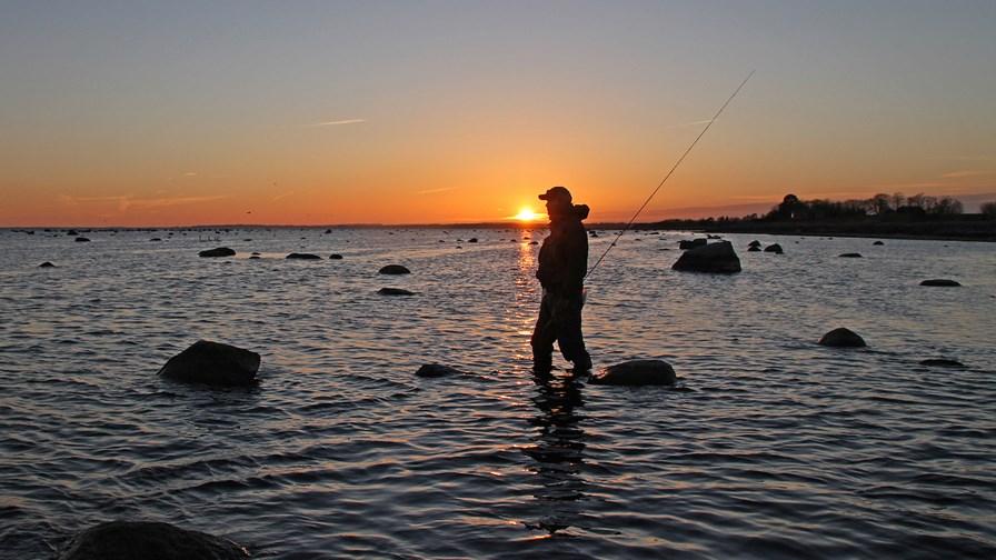 meerforellenangeln-lund-bei-stevns-klintseatrout-fishing.jpg