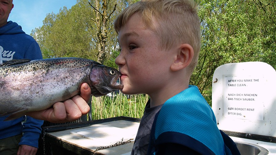 Kys fisken.JPG