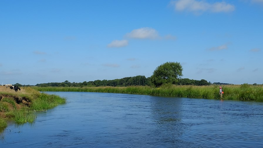 Lystfiskeri Natura2000