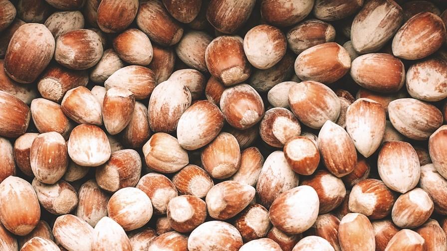 nuts-3027764_1920.jpg