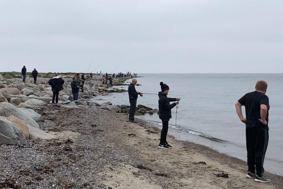 Lystfiskeriets Dag ved Halsskov Odde 2019-kopi.jpg