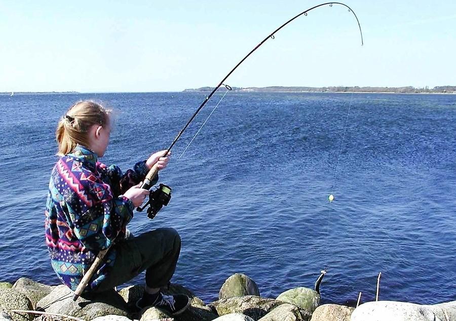 børn unge hornfisk 6.jpg
