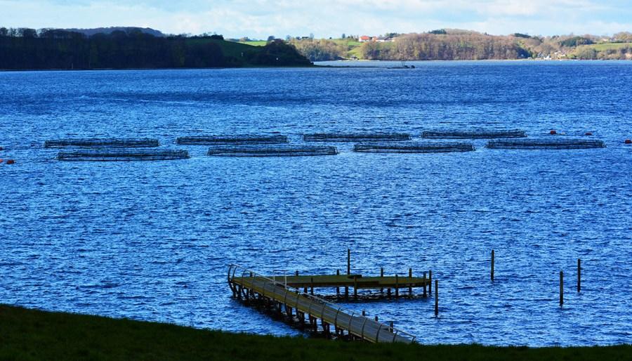 Børup Sande Havbrug Ligger 275 Meter Fra Land Foto KKFE