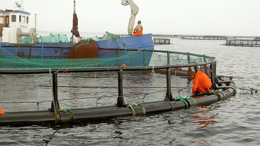 havbrug_0.jpg