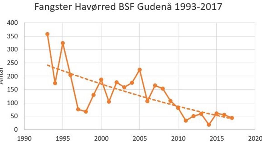 Udvikling i fangst havørred 1993 til 2017 BSF.JPG