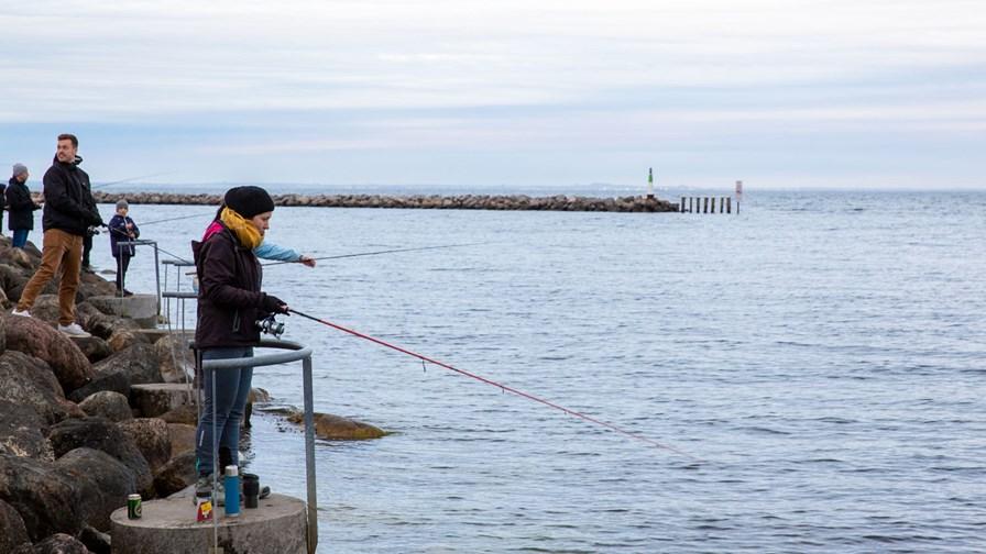 Fisketur Nybegynder