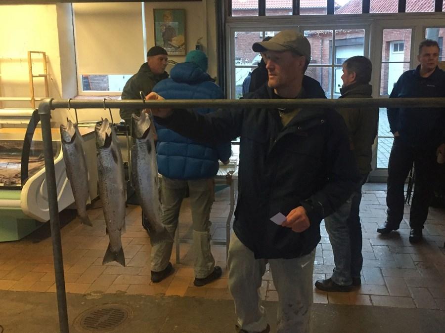 Jesperwagersfisk