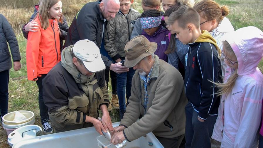 Anskuelsesundervisning i fiskepleje for skoleelever3.jpg