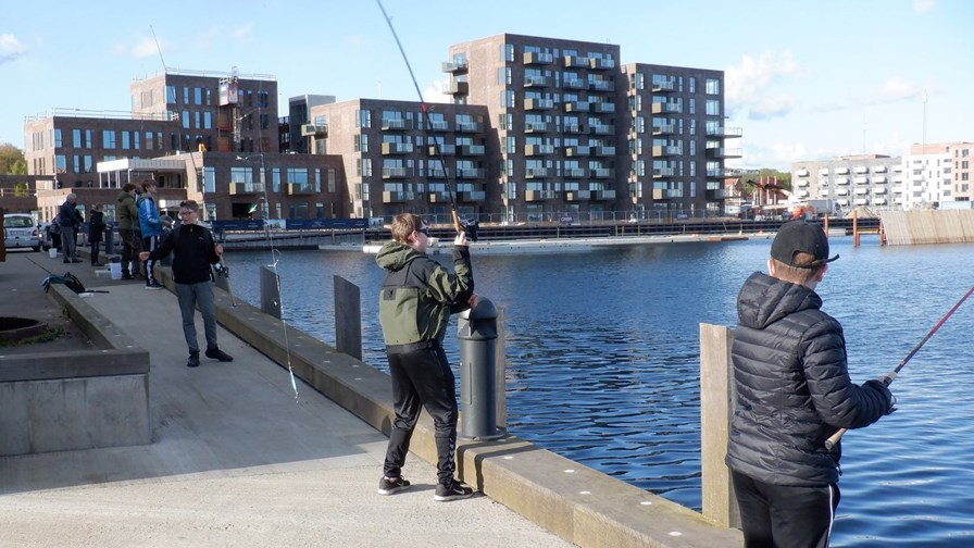 Fiskeskole Horsens
