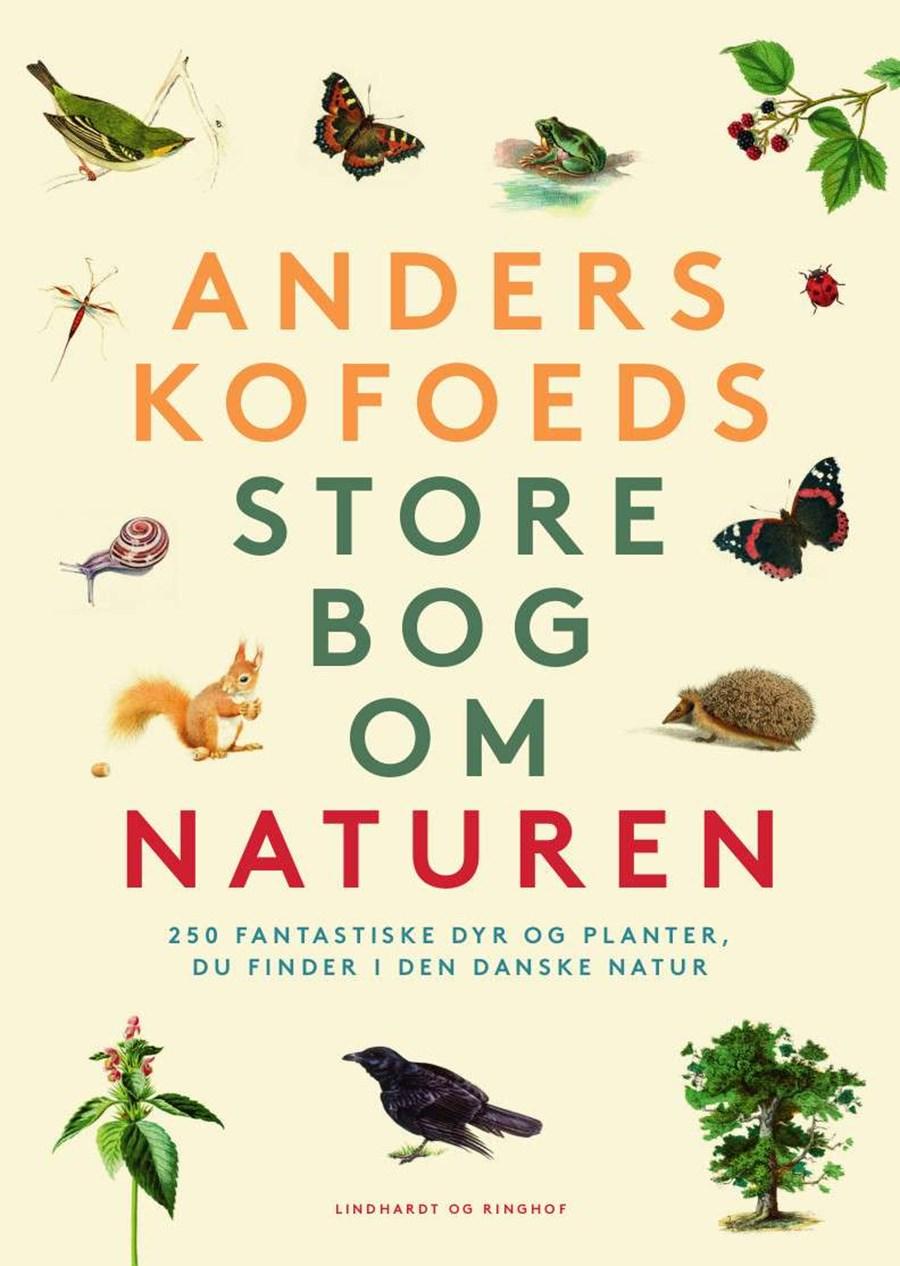Anders Kofoed2