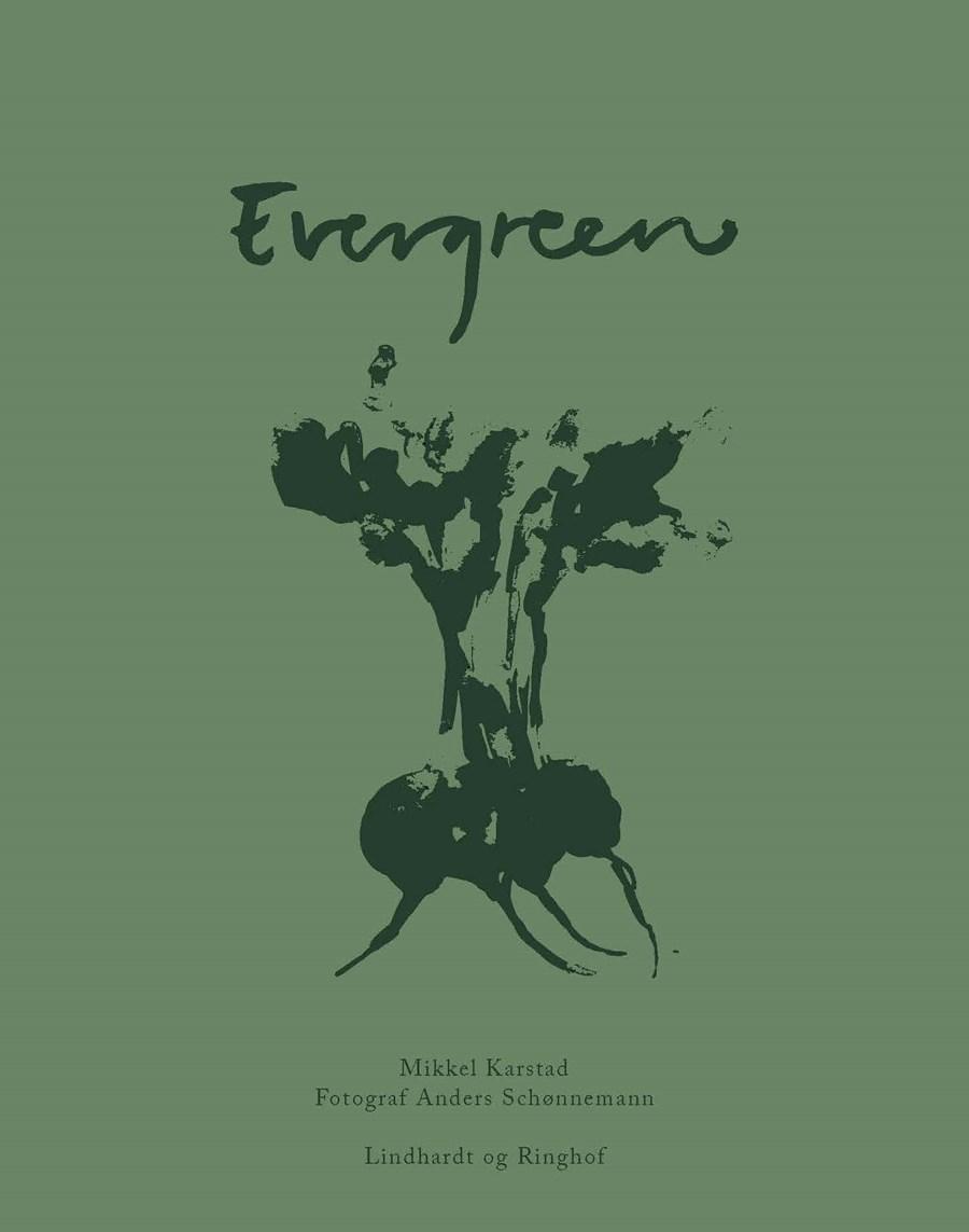 evergreen-kopi.jpg (1)
