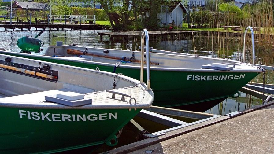 Fiskeringen