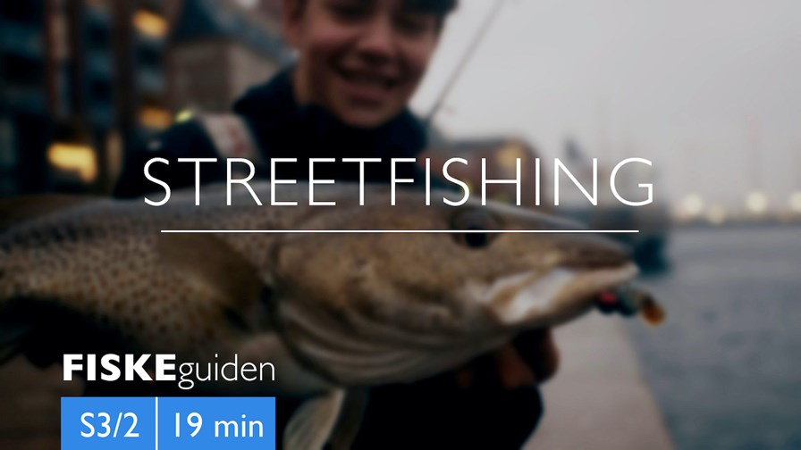Fiskeguiden Streetfishing