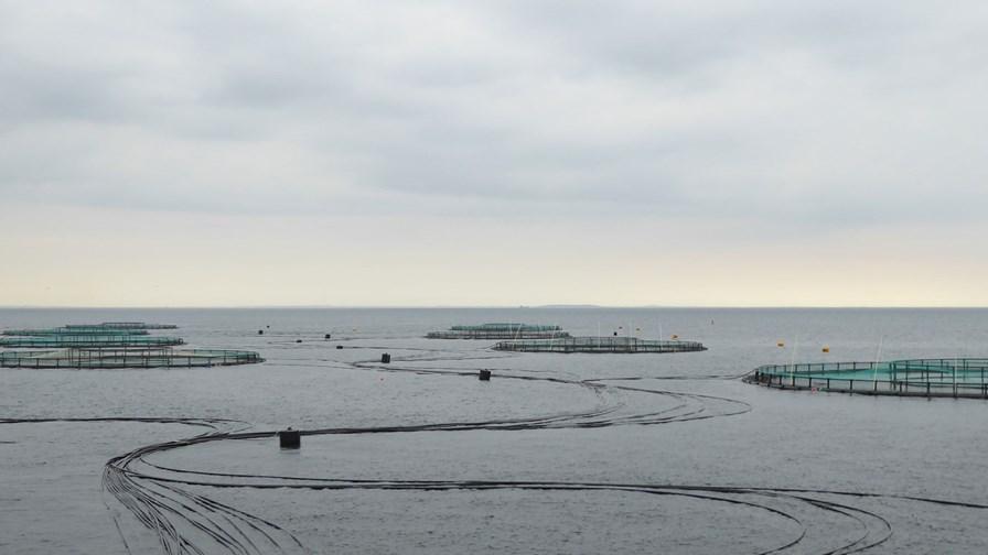Havbrug Placeringstilladelser