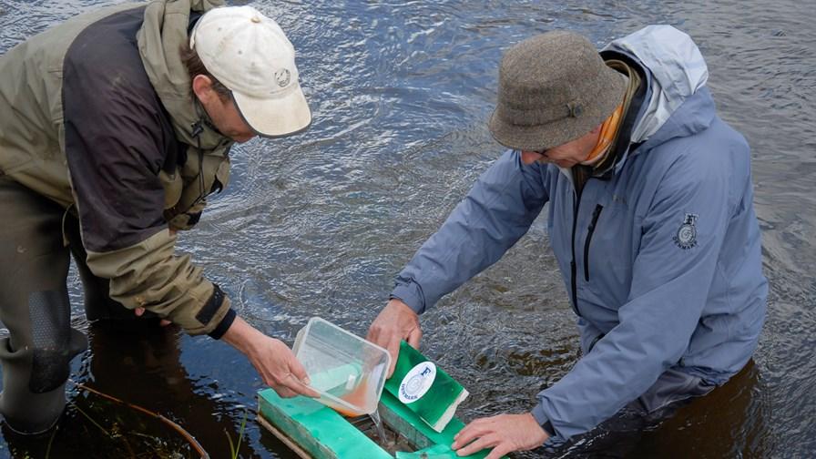 Anskuelsesundervisning i fiskepleje for skoleelever2.jpg