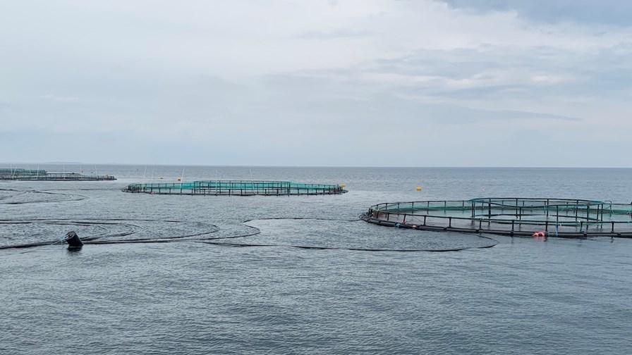 Havbrug Lovforslag